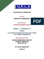 LA POLITICA AMBIENTAL EN LA CONSTITUCION POLITICA DEL PERU