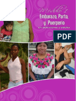 Modulo 1 Embarazo, Parto y Puerperio