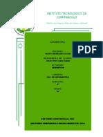 Organizacion Burocracia Divisionalizada 1