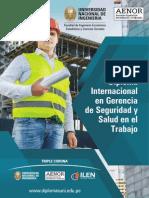 Diploma Internacional en Gerencia de Seguridad y Salud en El Trabajo