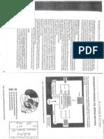 Tamaroff Introduccion a La Neuropsicologia Clinica