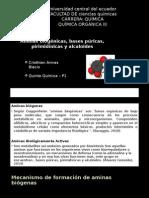 Tarea 10 Aminas Biogenas Armas C.