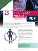 25-Microbiome