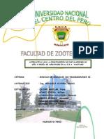Instalacion Cria y Recria Avestruces