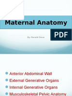 Ch 2 Maternal Anatomy