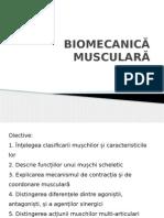 Curs 13 Biomecanica AnII BFKT