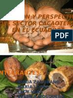 Presentacion Cacao 19 de Agosto 2012