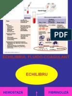 EFC.ppt
