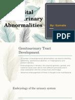 Ch 3 Genitourinary Tract Development