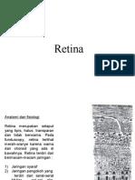 Retina Presentation