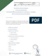 pautas_practica_aplicada.pdf