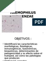haemophilus-1198633569555221-3.ppt