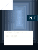 Index fossils in pakistan by khurram shahzad.docx