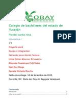 Proyecto word.docx