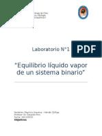 Equilibrio liquido vapor de un sistema binario