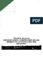 Perfil Proyecto Conservacion Proteccion Bosque Cuenca Rio Aguaytia 18