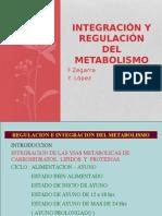 Integracacion y Regulación Metabólica(1)