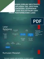 Proposal Skripsi PPT