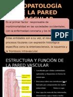 Enfermedad Renal Vascular