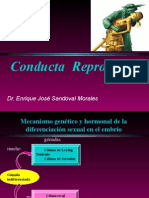 Conducta Reproductiva