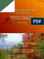 The Motor System Examination