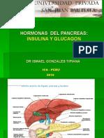 16a Hormonas Del Pancreas.