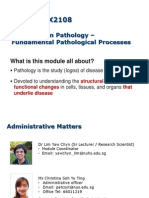 1 - Cell injury.pdf