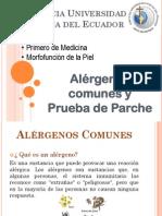 2015.II pielalergenoscomunes.pdf