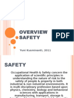 Overview Safety 2011