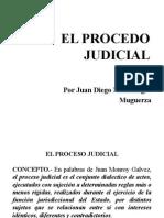 El Proceso Judicial