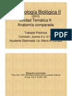 Esqueleto Apendicular - Cinturas y Miembros (1)