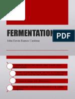 FERMENTATION.pptx