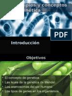 Principios y Conceptos de Genética