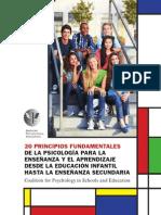20 principios fundamentales.pdf