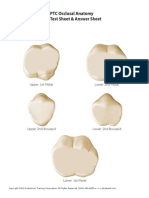 Ptc Occlusal Anatomy Test Sheet and Answer Sheet