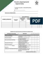 Ficha de Evaluacion Proyectos Sena 2015