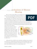 Section 3 PDF