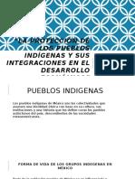 La Protección de Los Pueblos Indígenas