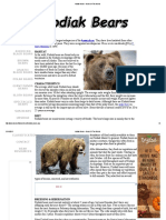 Kodiak Bears - Bears of the World