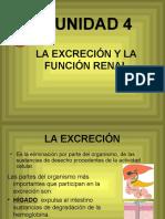 La Excrecion y La Funcion Renal