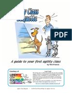 Agility Class Dog