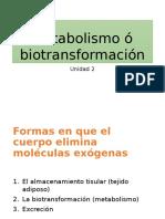 Biotranformación