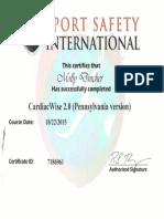 eport cardiac arrest certification