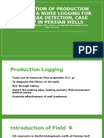 Application of Production Logging & Noise Logging For