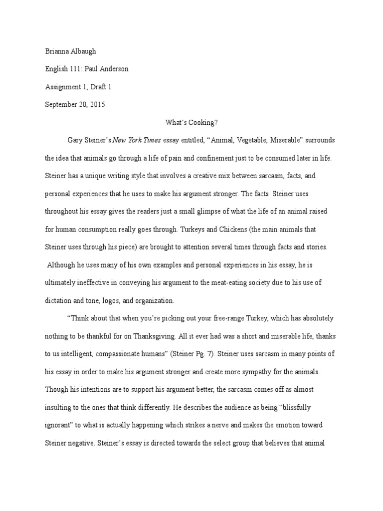 Essay on colombia south america