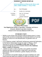 """Effect of Integrated nutrient management on Plant growth, Flower yield and Quality of Dahlia  (Dahlia variabilis) c.v """"Kenya White."""