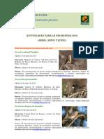 Actividades Birding Canarias - Primavera 2010