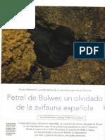 Situación del petrel de Bulwer en Canarias. Quercus 247.2006 JJRamos & DTrujillo