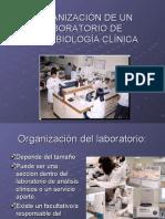 Org_Lab