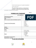 Plan de Afaceri Formular Standard